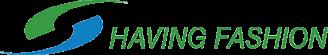 HAVING Logo